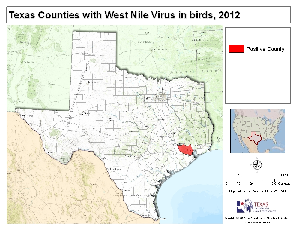 an overview of the west nile virus Overview the author explains  • west nile virus or another arbovirus  west nile virus was first isolated in 1937 in a febrile woman from the west nile.