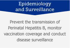 Epidemiology and Surveillance: Prevent the transmission of perinatal Hepatitis B, monitor vaccination coverage and conduct disease surveillance