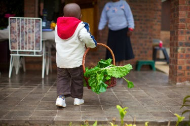 Boy with Basket of Greens